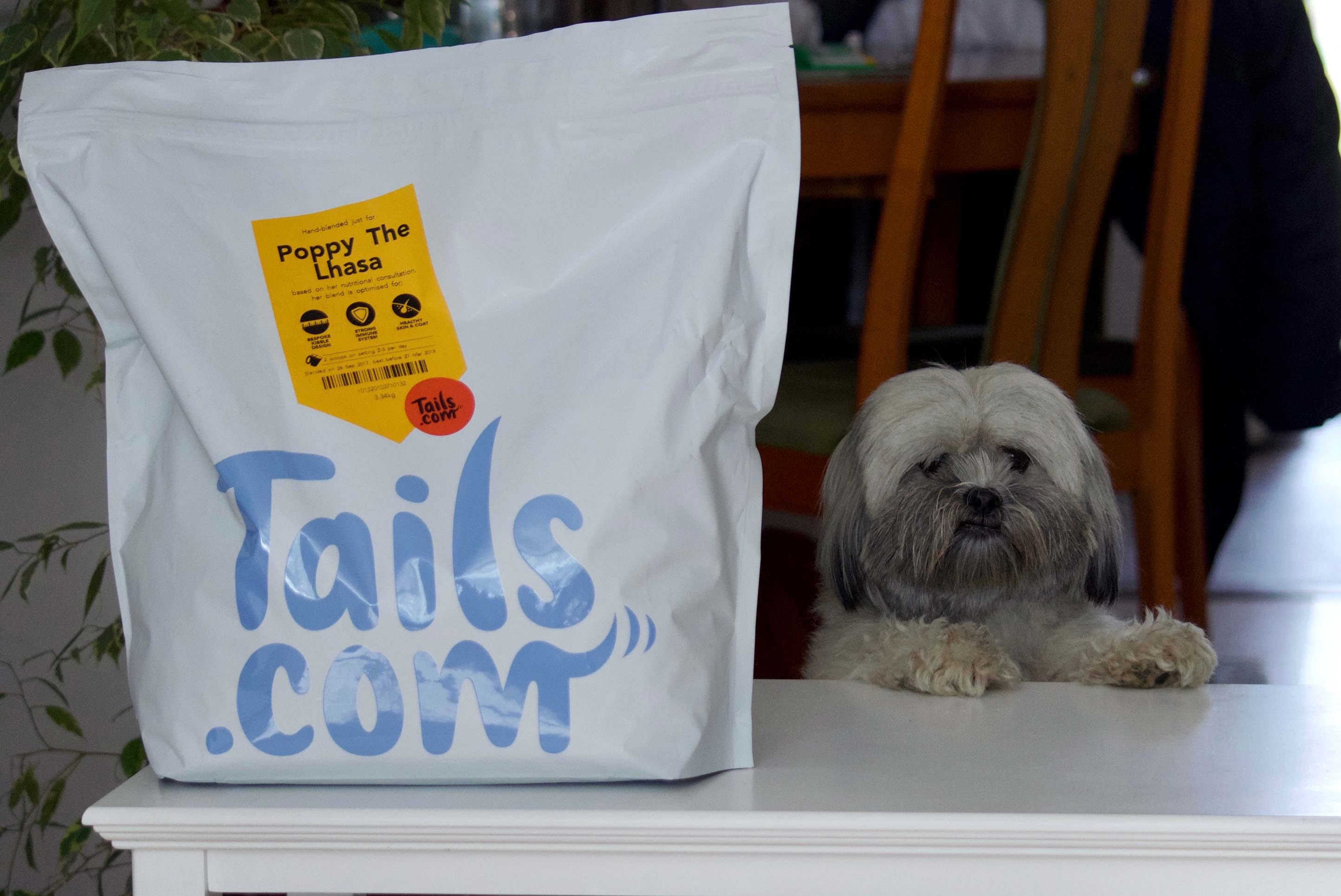 Tails Com Dog Food Free Trial Review Lhasalife