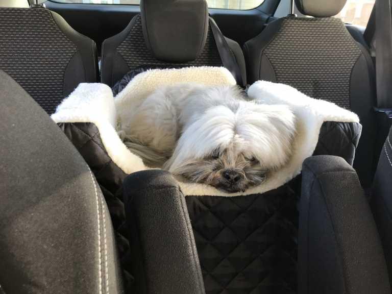 Easy Riser Car Seat